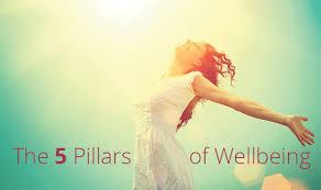 5 pillars of wellbeing